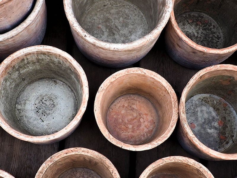 Empty terracotta pots that have been developing white mold