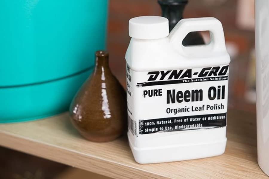 Pure Neem Oil Concentrate